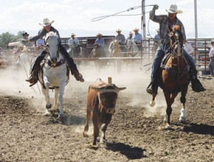 The father and son roping team of Logan and Todd Nunn participated in the team-roping event at the Pioneer Day Rodeo held on July 21 in Cowley.