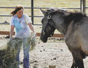 Lori Graham with wild horse