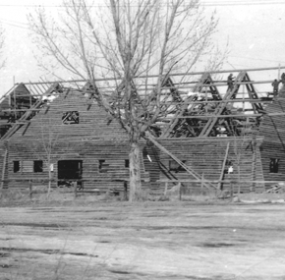 Workmen crawl on the Cowley Log Gym during the gym's construction in 1935-36. The newly renovated facility will be dedicated at a ribbon-cutting ceremony Saturday at 1:30 p.m.