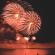 small_DSC_5538_MustangDaysFireworks