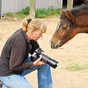 "Cloud Foundation founder Ginger Kathrens enjoys a moment with ""Cornet,"" a horse saved from slaughter due to the efforts of her organization. photos courtesy The Cloud Foundation"
